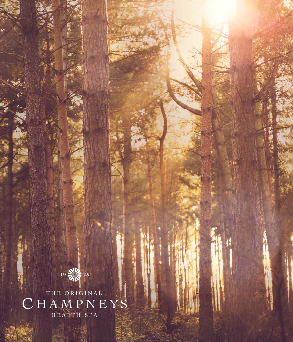 Champneys-Forest-Mere-Spa-Interior-Designers