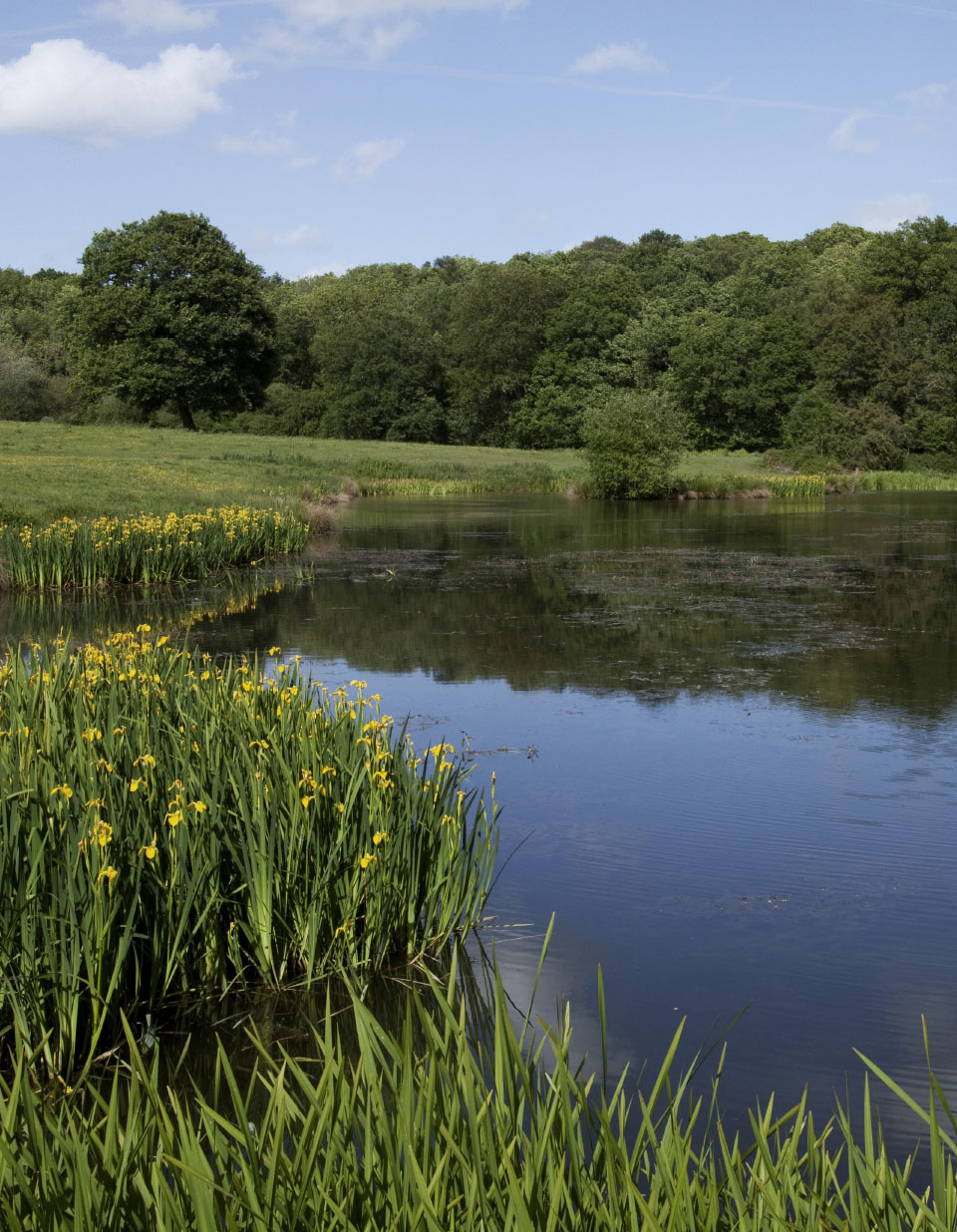 wyboston-hotel-design-spa-lakes